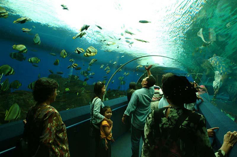 Океанариум (Underwater World)