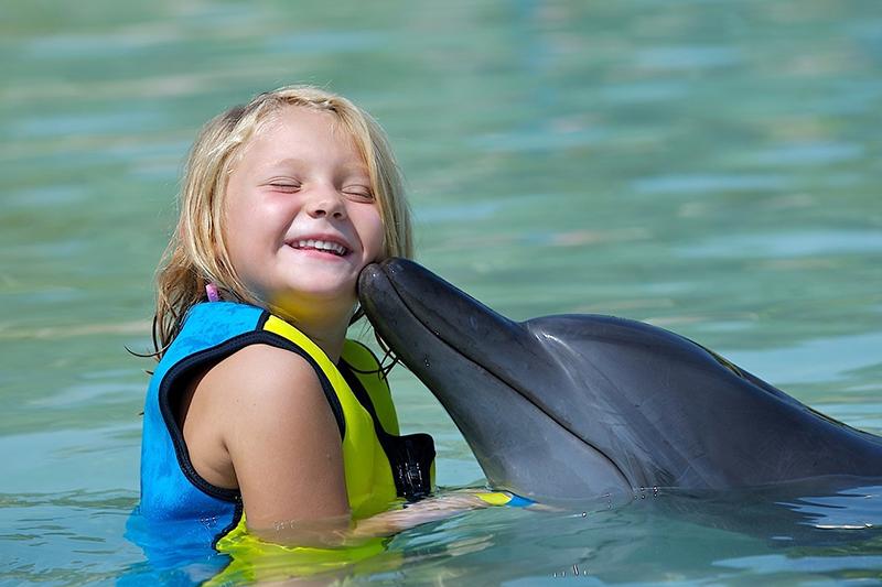 Дельфинарий и дельфинотерапия